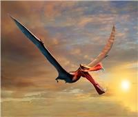 بعد 105 ملايين سنة.. العثور على «التنين الطائر»  صور