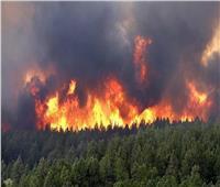 أفضل مداخلة| «باحثة سياسية» تكشف مأساة ضحايا حرائق الغابات بالجزائر