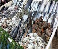 ثبات أسعار الأسماك في سوق العبور.. الخميس 12 أغسطس