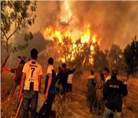 الحماية المدنية بالجزائر: نحاول إطفاء 92 حريقًا بـ16 ولاية