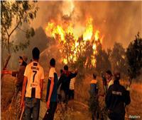 الجزائر.. فتح التحقيق في إحراق شاب لاتهامه بإشعال حرائق الغابات