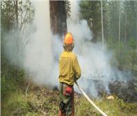 تونس تسيطرعلى حرائق الغابات الحدودية مع الجزائر