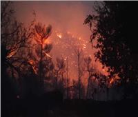 اندلاع حريق هائل في جبال القدس