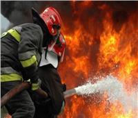 الحماية المدنية الجزائرية: إخماد 41 حريقا في 9 ولايات خلال 24 ساعة