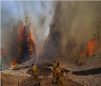 إسرائيل تطلب المساعدة الدولية لإخماد حرائق جبال القدس
