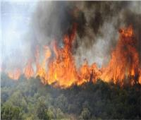فرق الإطفاء تكافح لإخماد حريق غابات ضخم في جنوب فرنسا