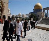 مستوطنون إسرائيليون يقتحمون المسجد الأقصى..والاحتلال يعتقل فلسطينيًا من باحاته