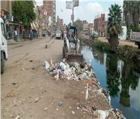 حملات نظافة بقري مركز المحلة الكبرى