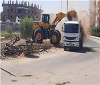 رفع 50 طن أتربة ومخلفات صلبة في حملة نظافة مكبرة بإسنا