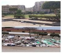 رفع القمامة بشارع البشبيشي بمدينة التجاريين