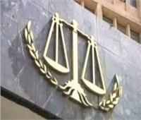 إحالة المتهم بقتل سيدة ونجلها للمحكمة الجنائية بالمنيا