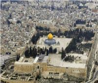في ذكرى حرق «الأقصى»| فلسطين تطالب بتنفيذ القرارات العربية والأممية الخاصة بالقدس