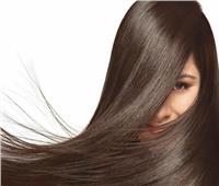 زيت جوز الهند الأفضل لترطيب الشعر الدهني