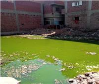 صور| مياه مجهولة تغزو قرية «كفر عليم» بالقناطر