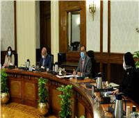 رئيس الوزراء: تيسير إجراءات حصول المستثمر الجاد على الأراضي الصناعية