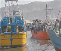 بعد توقف 135 يومًا.. «البحر بيضحك» مع انطلاق موسم الصيد بخليج السويس