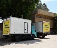 الأوقاف: توزيع 19 طنا من لحوم الأضاحيغدًا الخميس