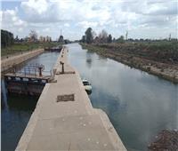 بالصور ثبات واستقرار منسوب مياه النيل في قرى الغربية