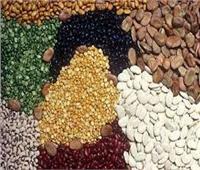 غرفة صناعة الحبوب: إجراء مناقصة جديد لتوريد الأرز الأبيض لوزارة التموين