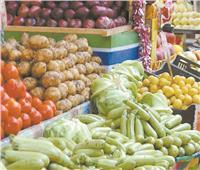 جولة السوق.. 10 جنيهات للبطاطس و9 للطماطم و15 للبامية