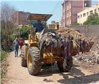 استمرار حملات النظافة على الطرق الرئيسية بين القرى بالمحلة   صور