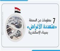 إنفوجراف| 7 معلومات عن محطة تحيا مصر «متعددة الأغراض» بميناء الإسكندرية