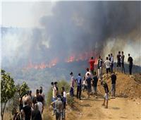 السطات الجزائرية تعتقل 30 شخصا لتورطهم في حرائق الغابات