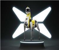 «وحيد القرن».. روبوت مطور مُخصص للأطفال | فيديو