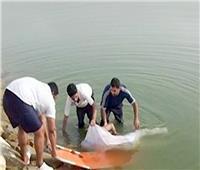 مأساة أسرية.. غرق شاب وخطيبته بنهر النيل أثناء نزهة في سوهاج