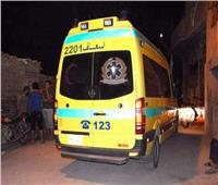 """إصابة 8 أشخاص فى مشاجرة بسبب """"البلح"""" فى أسوان"""