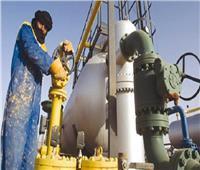 الجزائر تستهدف زيادة قدرها 2.6 مليار دولار في الاستثمار في الطاقة العام القادم
