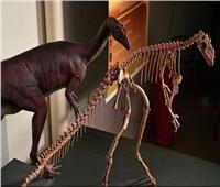 علماء يتوصلون لسر اختفاء الديناصورات