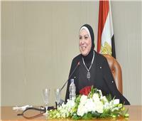 نيفين جامع: وضعت رؤية لتفعيل دور المكاتب التجارية المصرية بالخارج