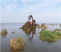 تطوير وإزالة التعديات على 35 ألف فدان بـ«بحيرة المنزلة»| فيديو