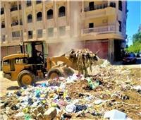 حملة مكبرة لرفع القمامة من الشوارع والطرق بمدينة المنصورة والقرى التابعة لها
