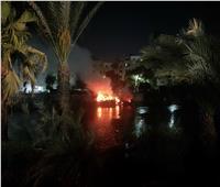 حريق في بعض الأشجار على ضفة نهر النيل بالمنيل