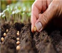 المشروع القومي للبذور يُعزز الإنتاج الزراعي | فيديو