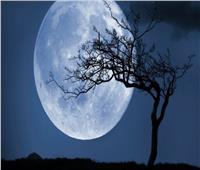 «البحوث الفلكية» يكشف موعد إمكانية رؤية القمر بدرا بالعين المجردة | فيديو
