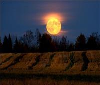 الأخير بفصل الصيف.. ظهور «قمر الحصاد» في هذا الموعد