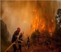 السجن المؤقت لـ47 مشتبها بتهمة التورط في حرائق الغابات بالجزائر