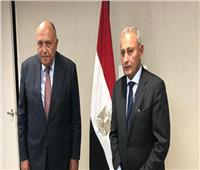 سامح شكري يلتقي أمين عام الاتحاد من أجل المتوسط