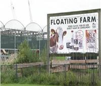 مزرعة أبقار عائمة فوق الماء بغرض حماية المناخ في هولندا   فيديو