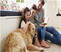 6 نصائح لممارسة النظافة الصحية مع حيواناتك الأليفة
