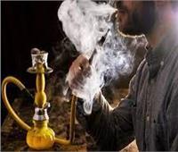 مايسة عطوة تطالب بتكثيف الحملات على الكافيهات والمقاهي