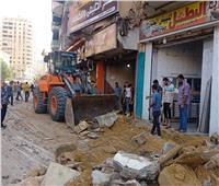 رفع ٩٨٠ حالة إشغال وإزالة التعديات بحدائق الأهرام ومنشأة البكاري| صور