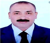 شعبة الخضر: مصر الجديدة تشهد نهضة زراعية غير مسبوقة