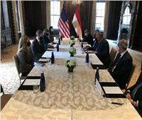 سامح شكري يلتقي نظيره الأمريكي لبحث العلاقات الثنائية والقضايا الإقليمية
