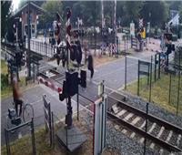 لحظات نجاة امرأة من الموت دهسًا قبل مرور قطار سريع  فيديو