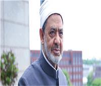 الإمام الأكبر يهنئ خادم الحرمين الشريفين بالذكرى الـ91 لليوم الوطني السعودي
