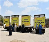 الأوقاف: توزيع 14 طن لحوم أضاحي غدًا الجمعة